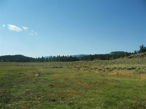 Powderhorn Mesa Ranch : Powderhorn : Gunnison County : Colorado