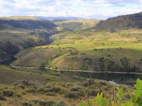 Sapinero Ranch : Gunnison : Colorado