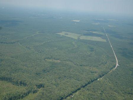 Pocotaligo Tract C : Varnville : Hampton County : South Carolina