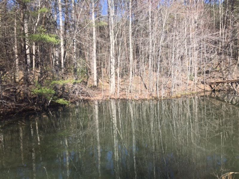26+/-Acres Unrestricted With Lake : Tracy City : Grundy County : Tennessee