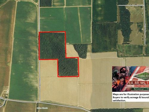 60 Ac - Hardwood Timberland For Dee : Eudora : Chicot County : Arkansas