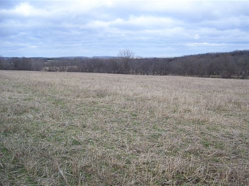 Tillable Farm Land Trophy Hunting : Cambria : Columbia County : Wisconsin