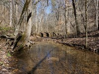 Acreage In Cherokee National Forest : Reliance : Polk County : Tennessee
