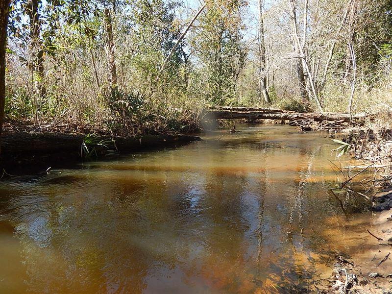 Sandy Hill Creek Retreat : Oconee : Washington County : Georgia