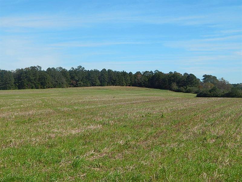 Horse Farm Or Home Site : Madison : Morgan County : Georgia