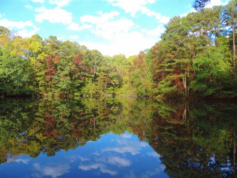 Home, Pond And Big Timber : Social Circle : Newton County : Georgia