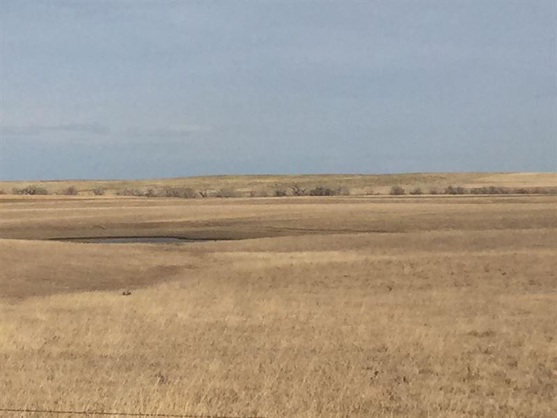 Highland Meadows : Windsor : Weld County : Colorado