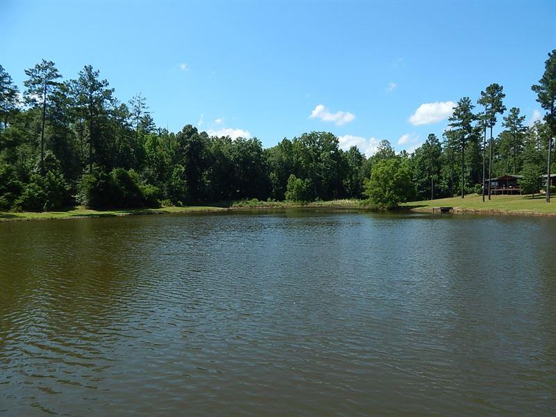 Cedar Creek Plantation & Timber : Danville : Wilkinson County : Georgia