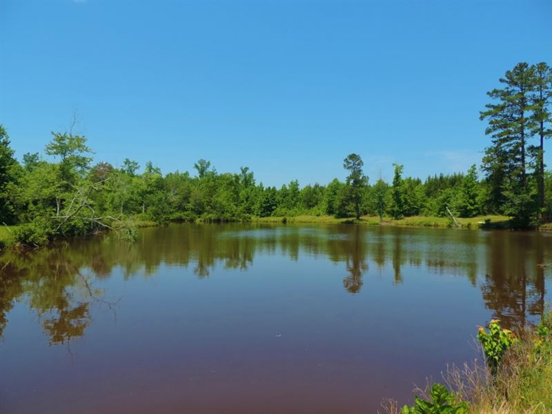 Pond And Cabin : Sparta : Hancock County : Georgia