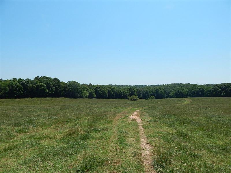 Reduced Cattle & Creek : Bowman : Elbert County : Georgia