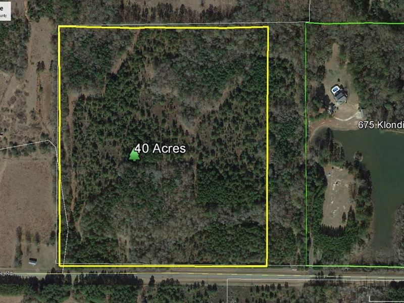 40 Ac Country Home Site Near Perry : Perry : Houston County : Georgia