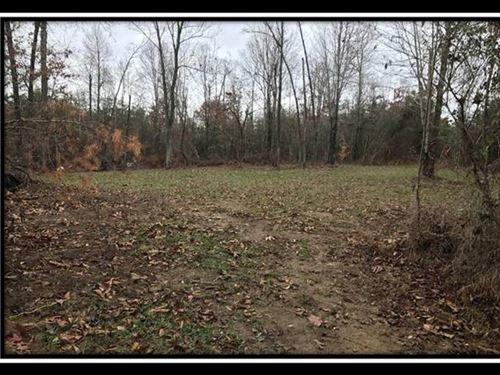 Beautiful 21 Acre Building Site : Patriot : Gallia County : Ohio