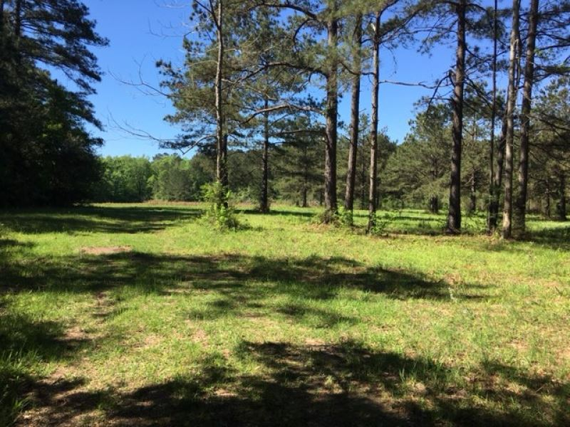 22.64 Acres Pike Co : McComb : Pike County : Mississippi