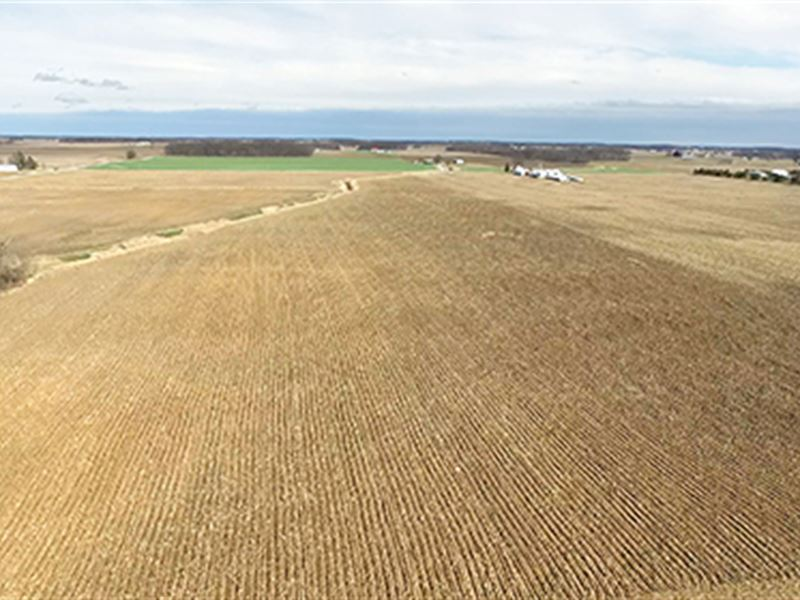 Land Auction - 157 Ac In 4 Tracts : Columbia City : Whitley County : Indiana