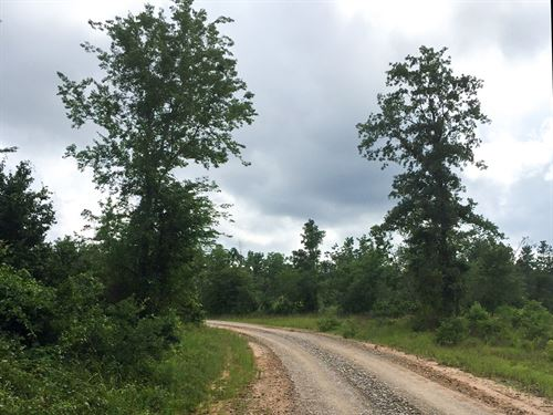 18 Ac Willow Springs Road : Coldspring : San Jacinto County : Texas