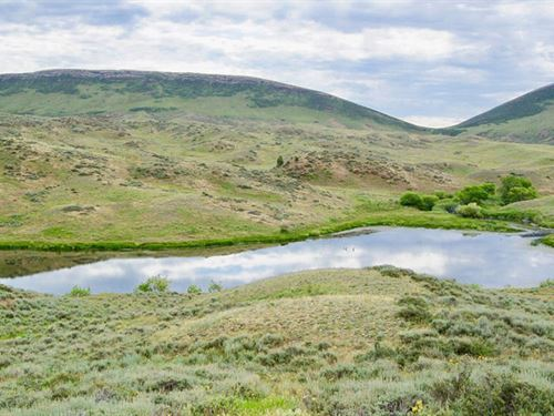 Ox Ranch-Large Wildlife Paradise : Wheatland : Platte County : Wyoming