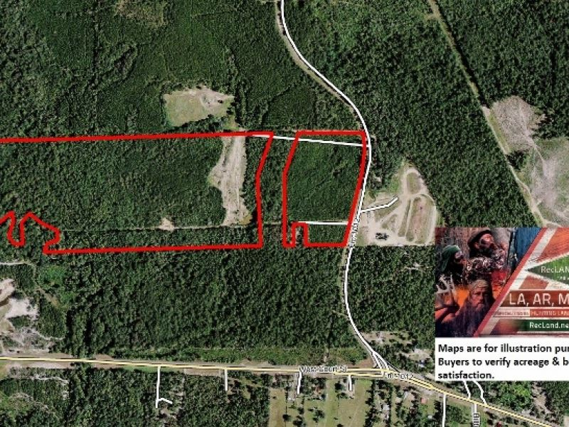 29.5 Ac - Timberland For Hunting Or : Newton : Newton County : Texas