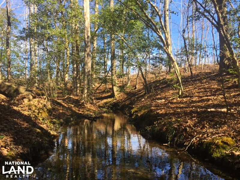 Mt. Pisgah Recreational Acreage : Kershaw : Kershaw County : South Carolina