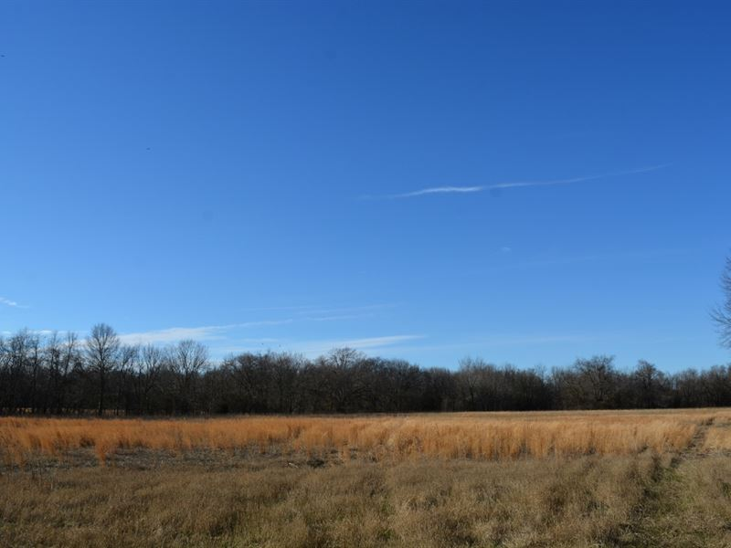 Land In Sulphur Springs : Sulphur Springs : Hopkins County : Texas