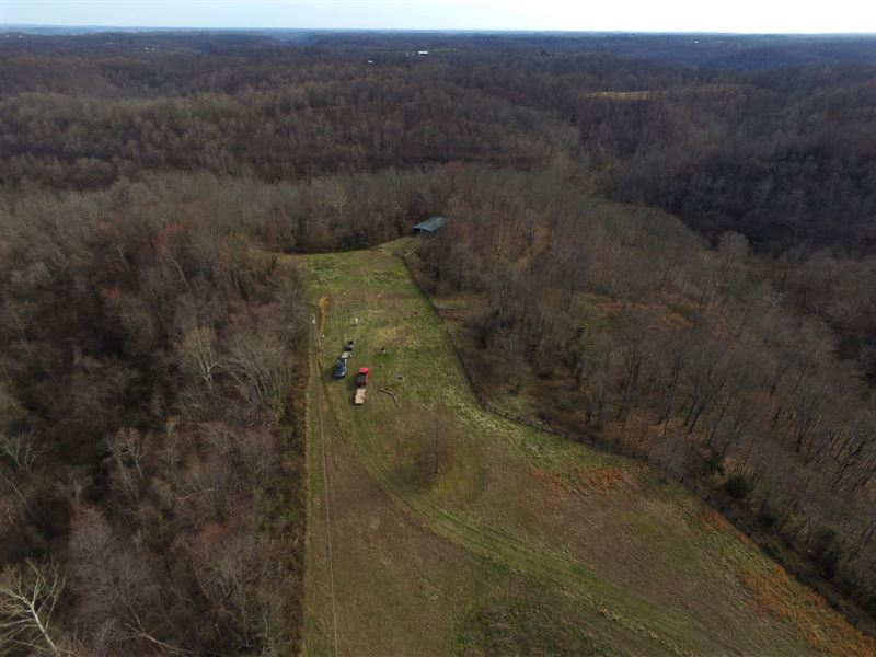 Burnt Run Rd - 55 Acres : Crown City : Gallia County : Ohio