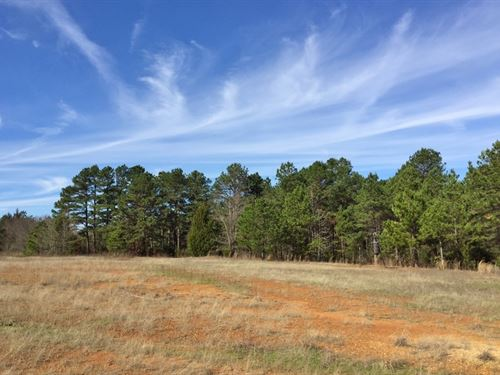 2/1 Home On 110+ Acres : Leesburg : Camp County : Texas
