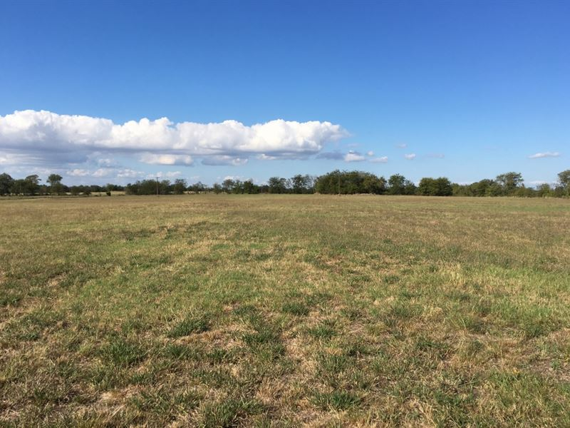 170+ Acres In Hopkins County : Dike : Hopkins County : Texas