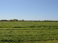 255 Acres In Hopkins County : Sulphur Springs : Hopkins County : Texas