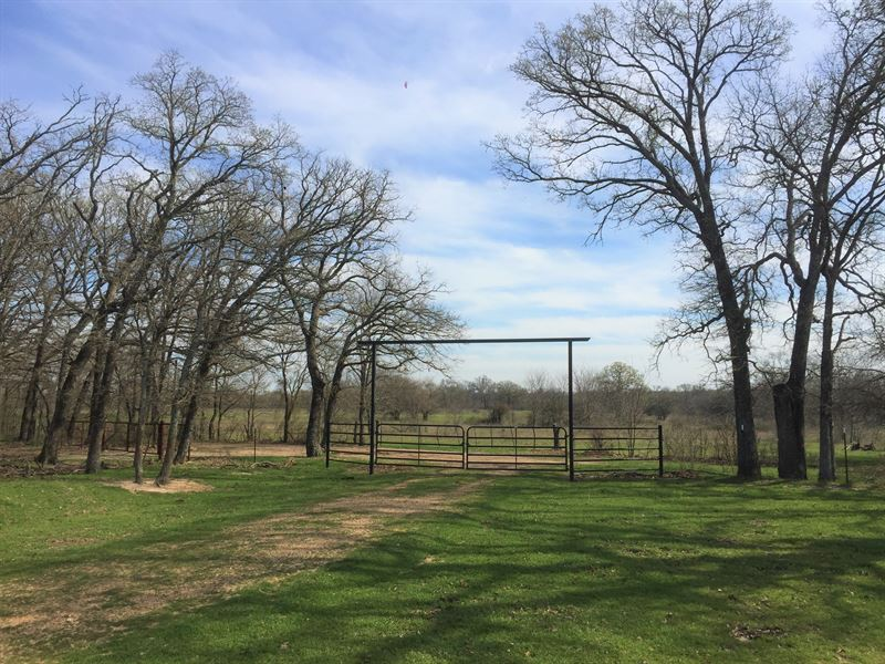 101+ Acres In Hopkins County : Sulphur Springs : Hopkins County : Texas