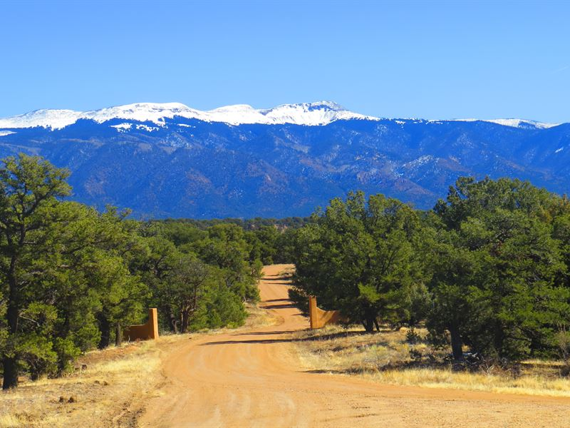 8 Milligan Ranch : Gardner : Huerfano County : Colorado