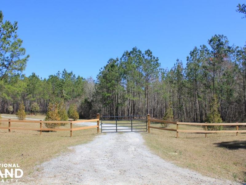 National Forest 45 Acre Retreat : Shulerville : Berkeley County : South Carolina