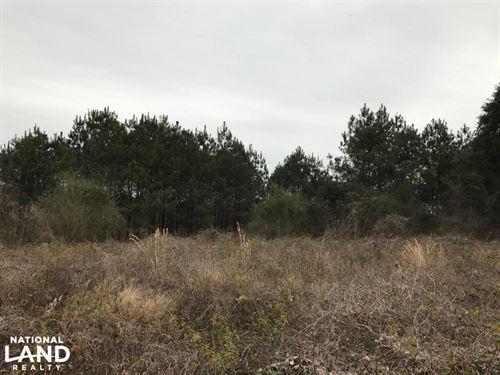 Little Duck Creek Tract : Georgiana : Conecuh County : Alabama