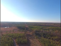 342 Acres In Oktibbeha County : Starkville : Oktibbeha County : Mississippi
