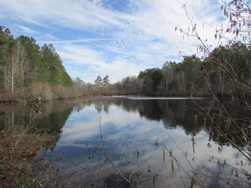 Big Branch Creek Property : Cairo : Grady County : Georgia