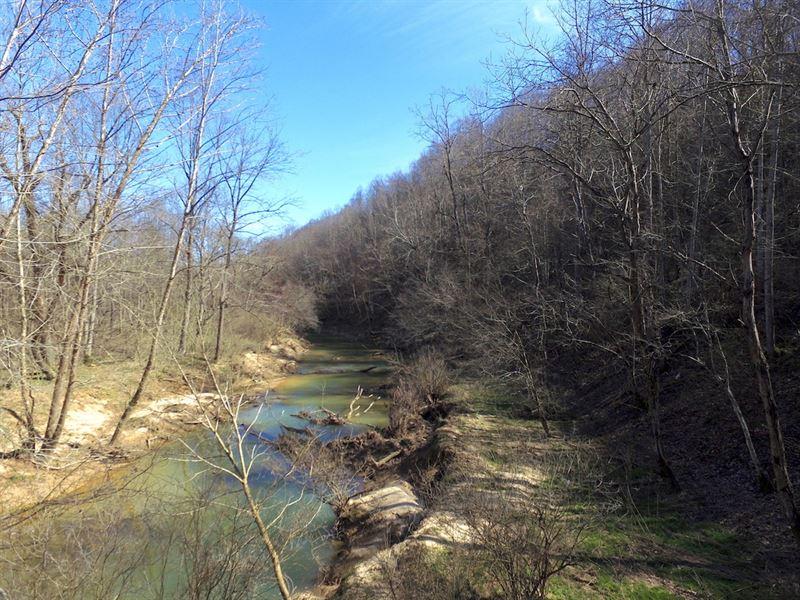 Glade Run Rd - 44 Acres : Minford : Scioto County : Ohio