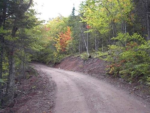 Incredible 330 Acres Hunt/Fish/Camp : Brook Village : Canada