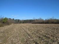 Bishop, Yarborough & Yarbrough : Kenansville : Duplin County : North Carolina
