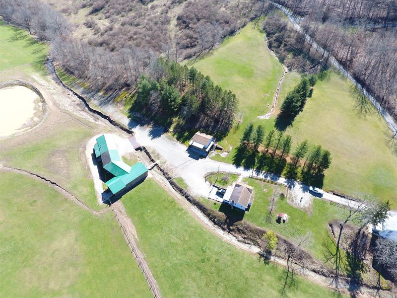 Harl Weiler Rd - 77 Acres : Caldwell : Noble County : Ohio