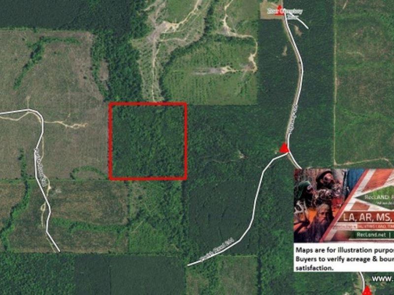 40 Ac - Hunting & Timberland So : Chatham : Jackson Parish : Louisiana