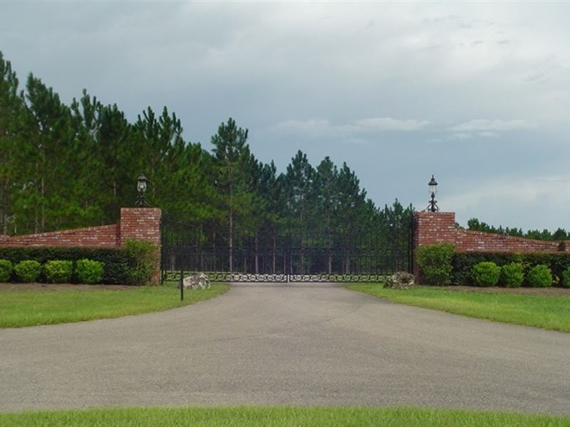 430 Acre Working Thoroughbred Farm : Williston : Marion County : Florida