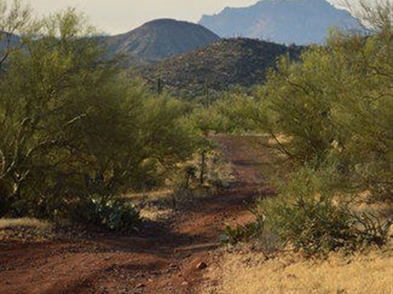 20 Acre Arizona Gold Mining Claim : Queen Valley : Pinal County : Arizona