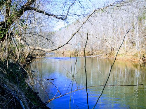 Beautiful Mountain Property : Schuyler : Nelson County : Virginia
