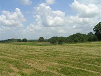 Farm, Hunting, Woods, Pasture : Spencer : Van Buren County : Tennessee