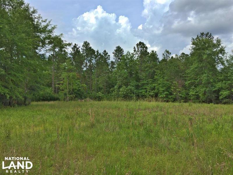 The Saraland Celeste Road Tract : Saraland : Mobile County : Alabama