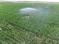 Ne Pandhandle Pivot Irrigated Farm : Lewellen : Garden County : Nebraska