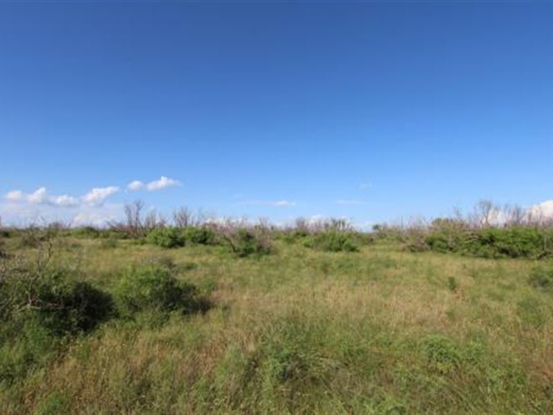 Cattle Ranch Auction - 1920 Acres : Electra : Wichita County : Texas
