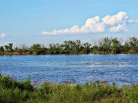 Cattle Ranch Auction - 2673 Acres : Electra : Wichita County : Texas