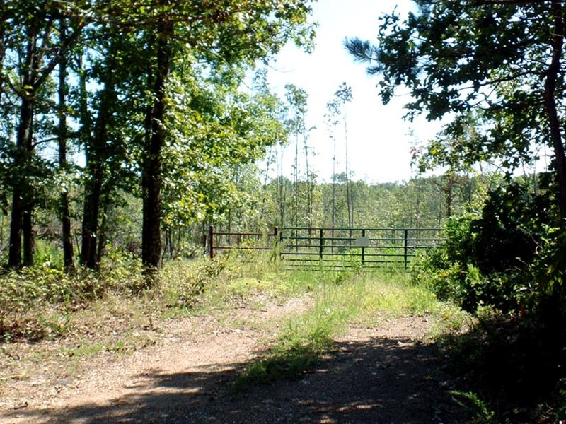 20 Gated Acres Near Jack Fork River : Mountain View : Texas County : Missouri
