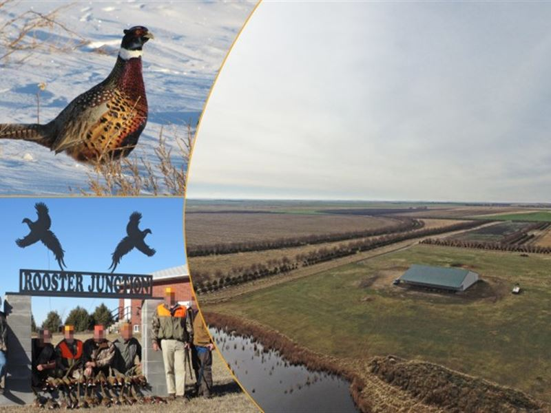 Rooster Junction : Alliance : Garden County : Nebraska