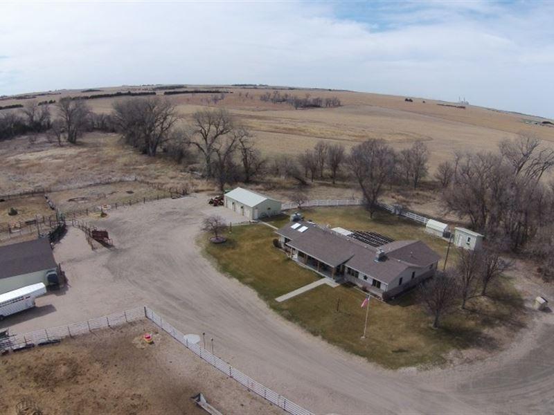 Hershey Equine, Cattle And Wildlife : Hershey : Lincoln County : Nebraska