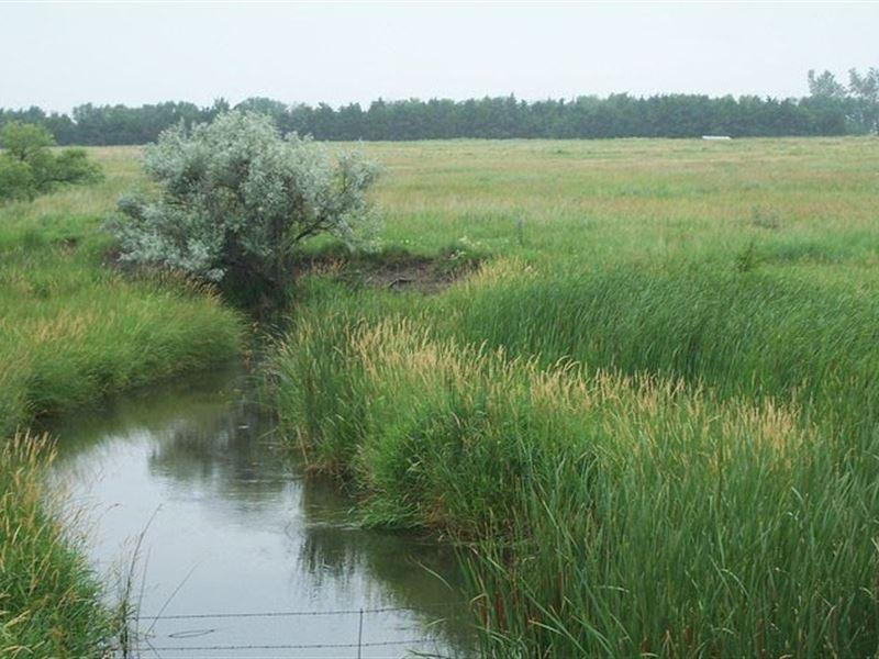 Walker Road Pivots And Range : North Platte : Lincoln County : Nebraska